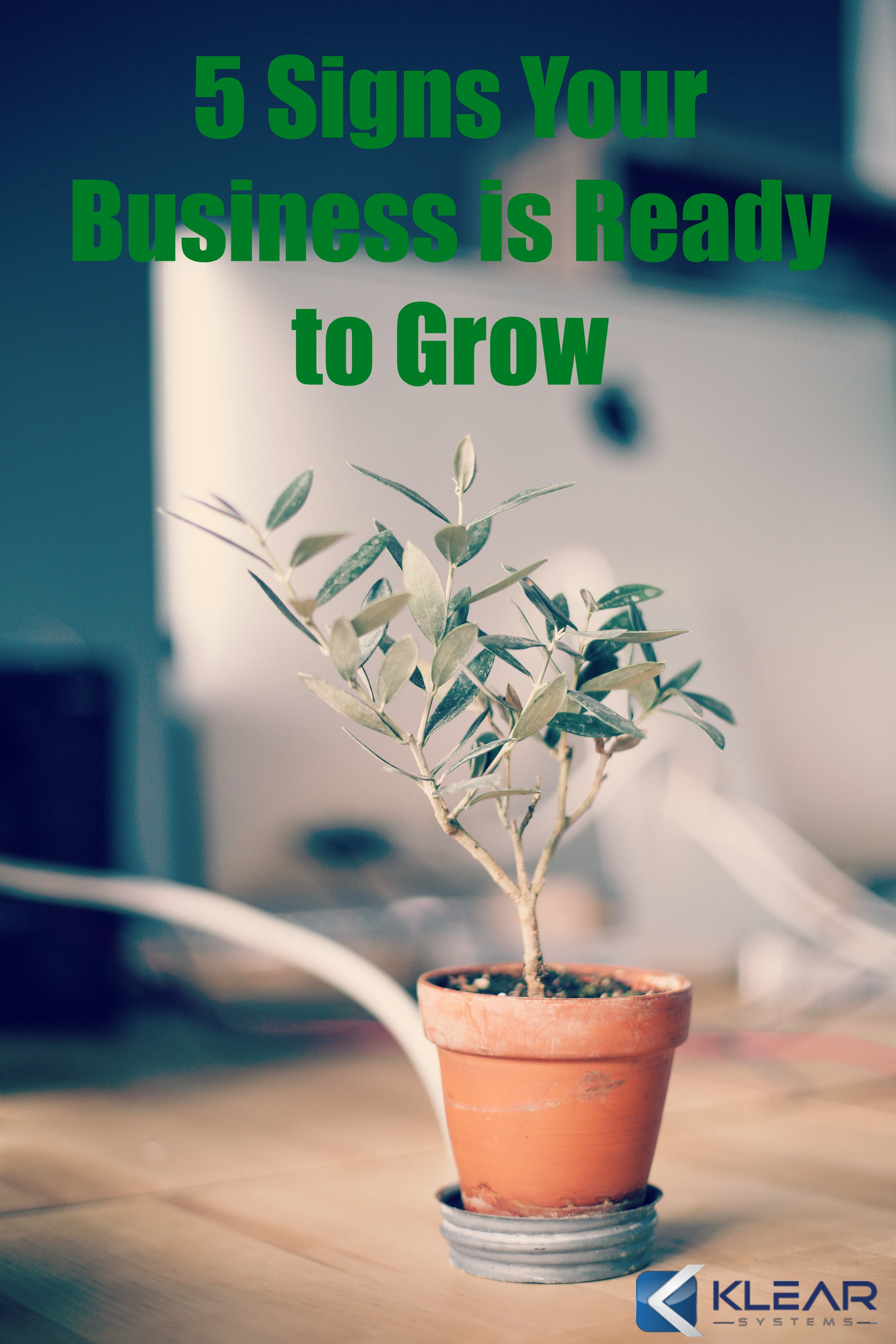 5 Signs Your Business is Ready to Grow.jpg